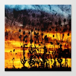 Teasel Silhouette Sunset with Textured Finish. Canvas Print