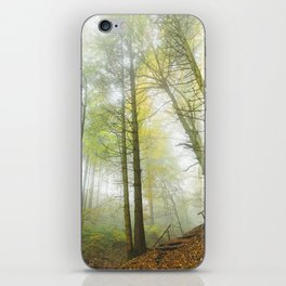 Interlude v3 iPhone Skin