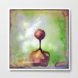 Little lost tree Metal Print