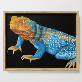 Collared Lizard Serving Tray