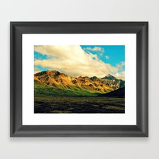 Denali National Park  Framed Art Print
