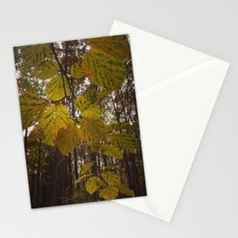 Fall In The Forest. Stationery Cards