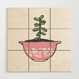 Jade Plant in Pyrex Wood Wall Art