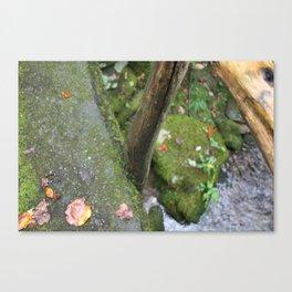 Stone Trails Canvas Print