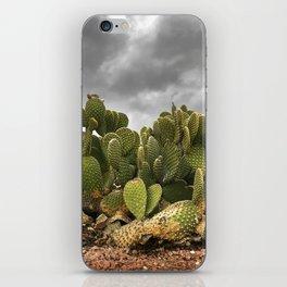 Driveway Cactus iPhone Skin