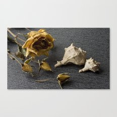Flowers and conch shells. Canvas Print