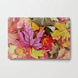 Autumn colorful leaves mountain Metal Print