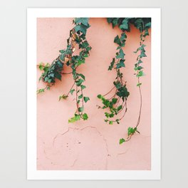 plants over pink Art Print