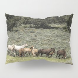 The Arrival Pillow Sham
