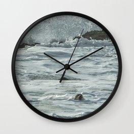 Harbor Seal, No. 1 Wall Clock