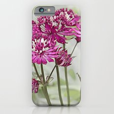 Pink Flowers in the Mist Slim Case iPhone 6s
