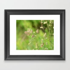 Country Road Side Blooms Framed Art Print