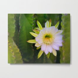 Shy Beauty Metal Print