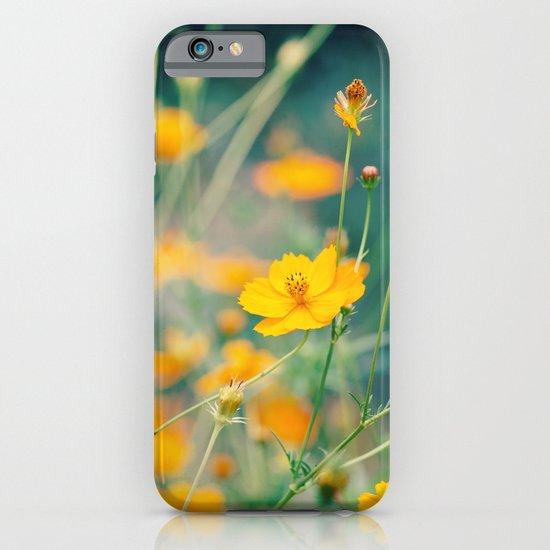 Orange Cosmos iPhone & iPod Case