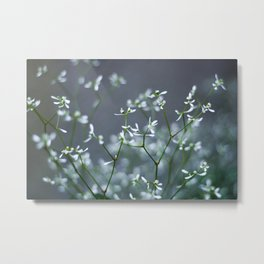 Tiny White Flowers Metal Print