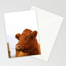 Mooo Stationery Cards