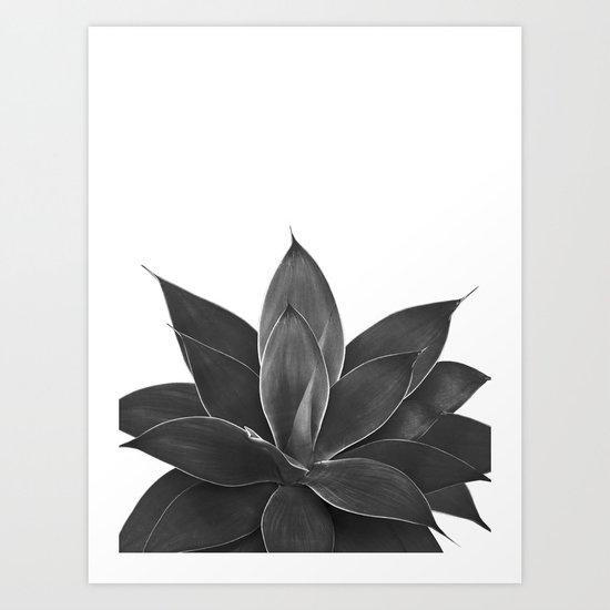 Black Agave #1 #tropical #decor #art #society6 by anitabellajantz