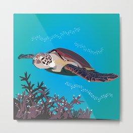Australian Green Sea Turtle Metal Print
