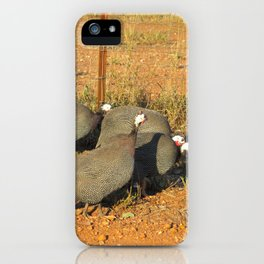 Guinea-fowl Gathering iPhone Case