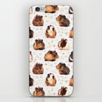 guinea pig iPhone & iPod Skins featuring The Essential Guinea Pig by micklyn