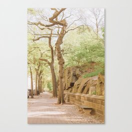 Spring on Central Park West Canvas Print