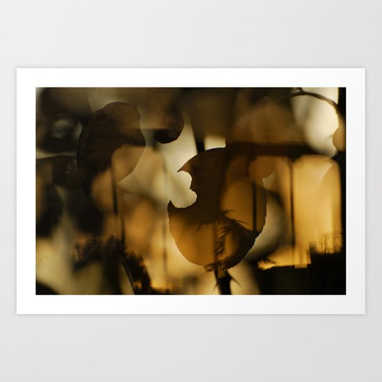 trapped in the autumn Art Print