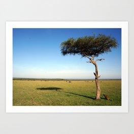 The Leopard In The Mara Art Print