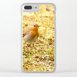 Hello Robin! Clear iPhone Case