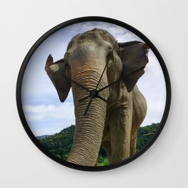Elephant in Northern Thailand Wall Clock