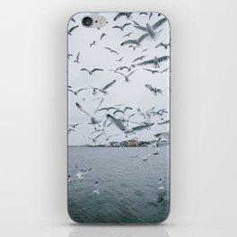A flock of seagulls; Winter choas  iPhone Skin