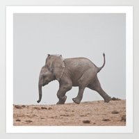 baby elephant Art Prints featuring Baby Elephant by Shaun Lombard