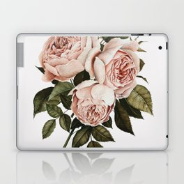Three English Roses Laptop & iPad Skin