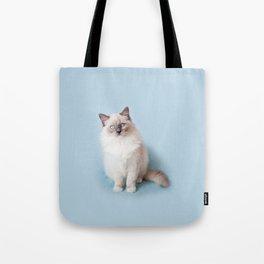 Blue eyed Ragdoll kitty sitting Tote Bag