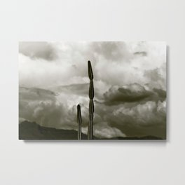 Cactus Against Monsoon Sky Metal Print