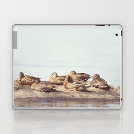 Lazy ducks Laptop & iPad Skin