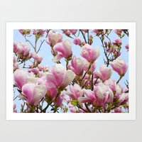 magnolia Art Prints featuring Magnolia. by Assiyam