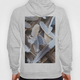 Feather Collection Hoody