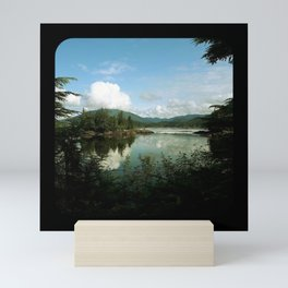 Butze rapids Mini Art Print