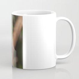Sun conure parrot Coffee Mug