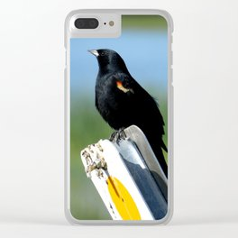 Red-Wing Blackbird Pride Clear iPhone Case