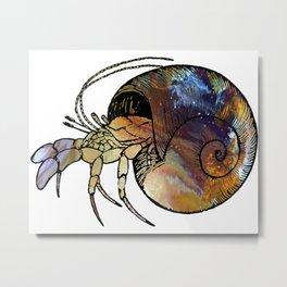 Hermit Crab Metal Print