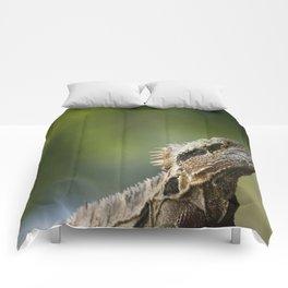 Water Dragon Comforters