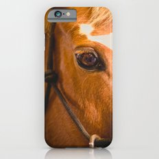 the horse's eye. Slim Case iPhone 6s