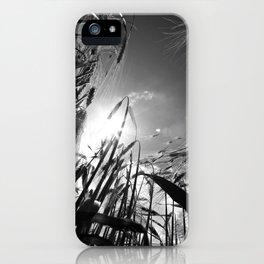 In the grain Black white iPhone Case