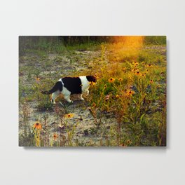 this miss in sunset II Metal Print
