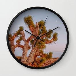 death valley ii / california desert Wall Clock