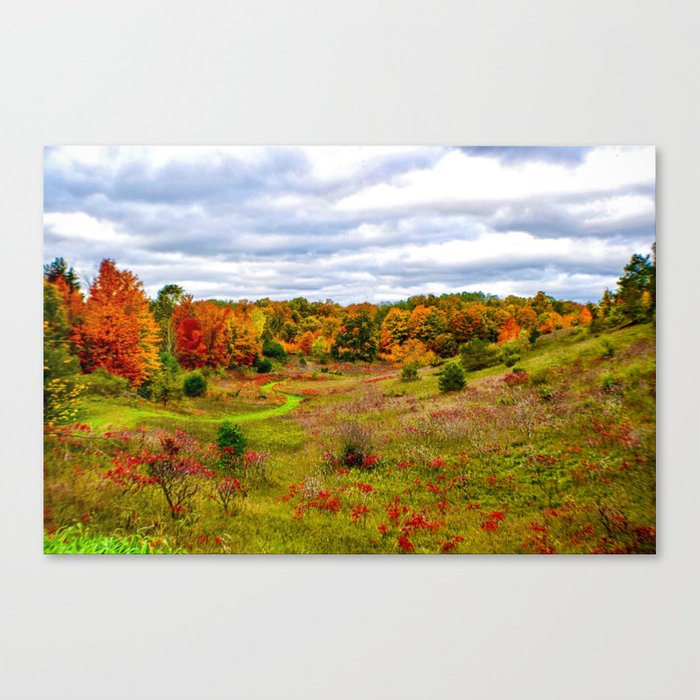 """Autumn Valley"" Canvas Print"