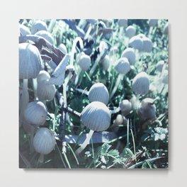 Mushroom Village 2 Metal Print