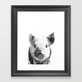 Black and white pig portrait Framed Art Print
