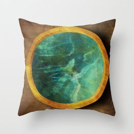 Exodus 30:18 Throw Pillow